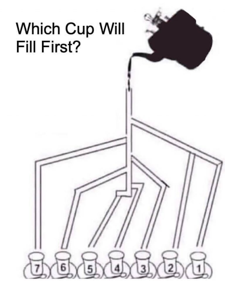 Which Cup Will Fill First Answer (SOLVED)